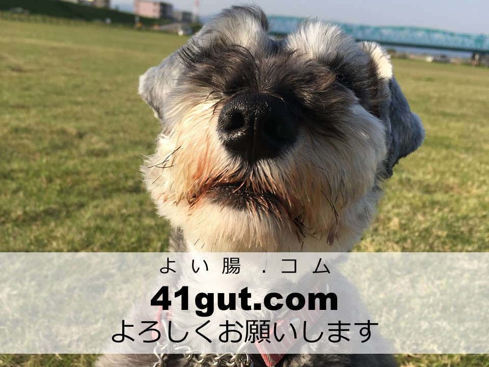 41gut.comよろしくお願いします